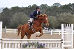 Equestrian center at Seabrook features lessons, beach rides and trail rides