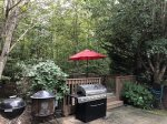Gas and Charcoal Grills and Fire Pit
