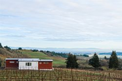 Bryn Mawr Vineyard Guesthouse: Gorgeous Vineyard Property with Vineyard Views