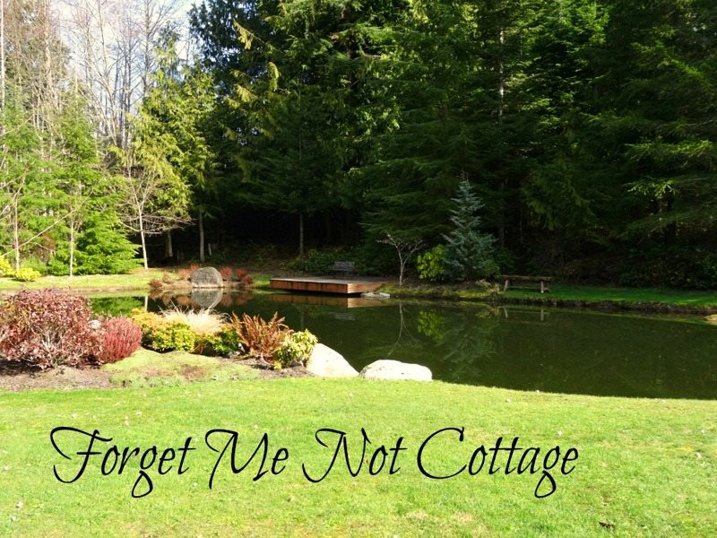 Forget Me Not Cottage | Brigadoon/Sequim Vacation Rentals