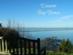 Cozy Cottage in Sequim with amazing views of the Strait of Juan de Fuca and Dungeness Spit