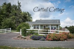 Peaceful pet friendly cottage with valley and mountain views, birder`s paradise.