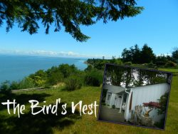 Bird and wildlife watchers, check this home that overlooks the Strait of Juan de Fuca
