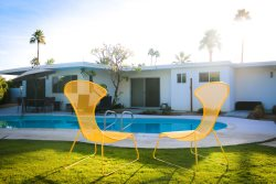 Mid Century Rose in South Palm Desert!