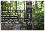 Hiking trails at Chinquapin