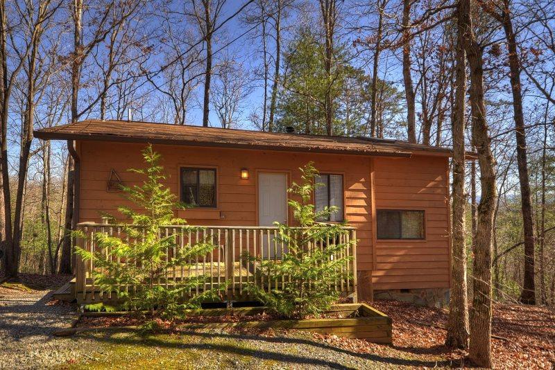 Birch Tree Cabin-Private GA Rental | North Georgia Vacation