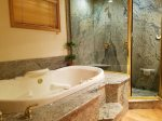 Master Bath with jetted tub and steam shower