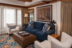 Willows Luxury Residence #302 ~ Vail Village