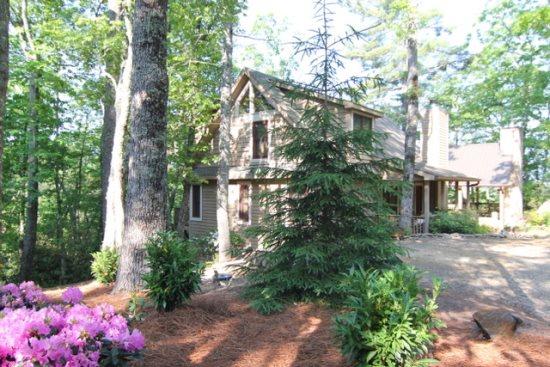 Mountain Treehouse