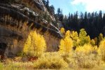 Fall in Cedar Canyon about an hour from La Verkin.