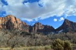 Zion is beautiful in the Winter or the Summer