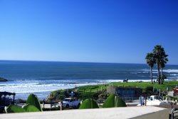 The Whale - Pacific Beach