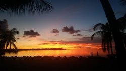 Serenity Bay Estate-FL Keys Best Kept Secret! Beautiful, Quiet, Tropical Pardise
