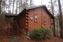 Ellijay Lake Lodge:  Lake view.  WiFi.  A Real Log Cabin!  Pet Friendly!