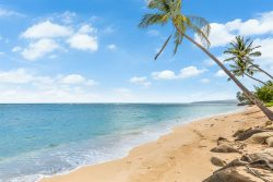 Exquisite Mokuleia Beachside Cottage