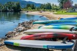 Rent your paddle board and kayak with Daugherty Management