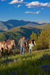 Concierge Services Summer Tours/Horseback Riding