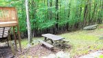 Picnic table in wooded backyard