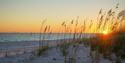 FUN! Sandy Pointe 202! Great Location! Super Short 4 min walk to the Beach!
