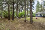 Front yard hammock in the trees.