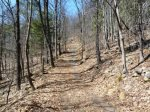 Easy hiking trail on the property