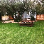 Backyard, picnic table and grill