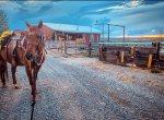 Heart Strings Ranch